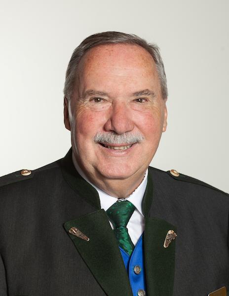 Johann Strassegger